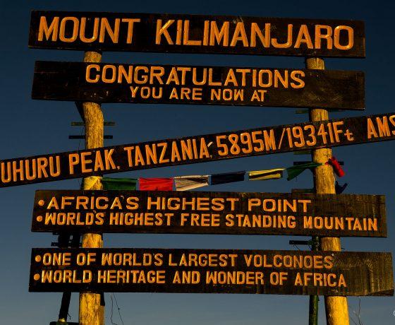 1080_PM_0022688-560x460 wyprawy na KILIMANJARO
