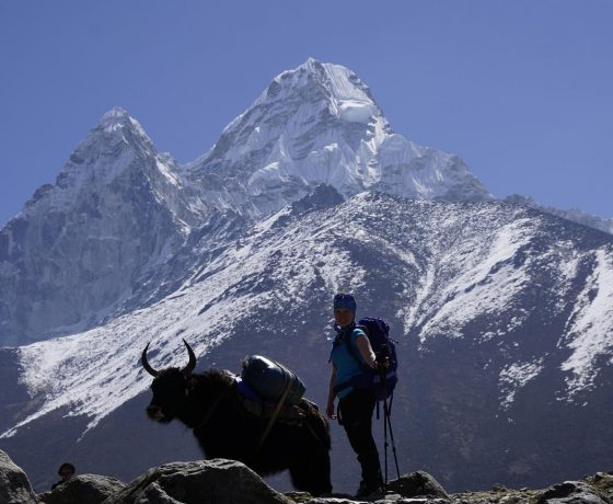 everest_base_camp_trekking_26_20151017_1243004976-560x460 ZDJĘCIA